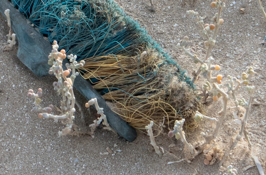 Photo of a discarded green brush on the beach of Dungeness